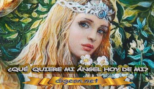 ¿QUÉ QUIERE MI ÁNGEL HOY DE MÍ? 07 de febrero + DECRETO DIVINO + evangelio del día de hoy 07 de febrero, MENSAJES DE LOS ÁNGELES, tu ángel, mensajes angelicales, el consejo diario de los ángeles, los Ángeles y sus mensajes, cada día un mensaje para ti, tarot de los ángeles, mensajes gratis de los ángeles, mensaje de tu ángel para hoy 07 de febrero, pronóstico de los ángeles hoy, reiki, palabra de dios hoy, evangelio del día, espiritualidad, lecturas del día, lecturas del día de hoy 07/02/2020, evangelio del domingo 07/02/2020, dios, evangelio de hoy 07/02/2020, san juan de dios, jesucristo, jesus, inri, cristo