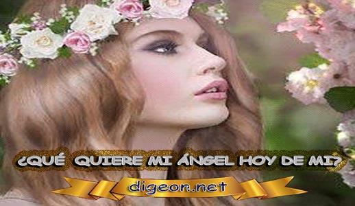 ¿QUÉ QUIERE MI ÁNGEL HOY DE MÍ? 31 de Marzo + DECRETO DIVINO + evangelio del día de hoy 31 de Marzo, MENSAJES DE LOS ÁNGELES, tu ángel, mensajes angelicales, el consejo diario de los ángeles, los Ángeles y sus mensajes, cada día un mensaje para ti, tarot de los ángeles, mensajes gratis de los ángeles, mensaje de tu ángel para hoy 31 de Marzo, pronóstico de los ángeles hoy, reiki, palabra de dios hoy, evangelio del día, espiritualidad, lecturas del día, lecturas del día de hoy 31/03/2020, evangelio del domingo 31/03/2020, dios, evangelio de hoy 31/03/2020, san juan de dios, jesucristo, jesus, inri, cristo
