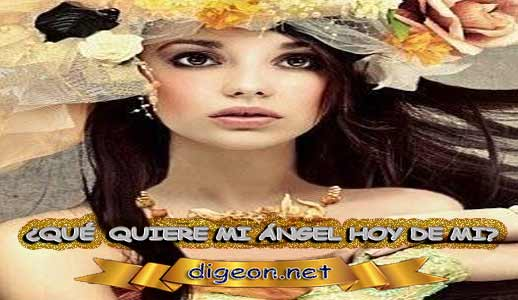 ¿QUÉ QUIERE MI ÁNGEL HOY DE MÍ? 02 de Junio + DECRETO DIVINO + evangelio del día de 02 de Junio, MENSAJES DE LOS ÁNGELES, tu ángel, mensajes angelicales, el consejo diario de los ángeles, los Ángeles y sus mensajes, cada día un mensaje para ti, tarot de los ángeles, mensajes gratis de los ángeles, mensaje de tu ángel para 02 de Junio, pronóstico de los ángeles hoy, reiki, palabra de dios hoy, evangelio del día, espiritualidad, lecturas del día, lecturas del día de hoy 02 de Junio, evangelio del domingo 02 de Junio, dios, evangelio de hoy 02 de Junio, san juan de dios, jesucristo, jesus, inri, cristo