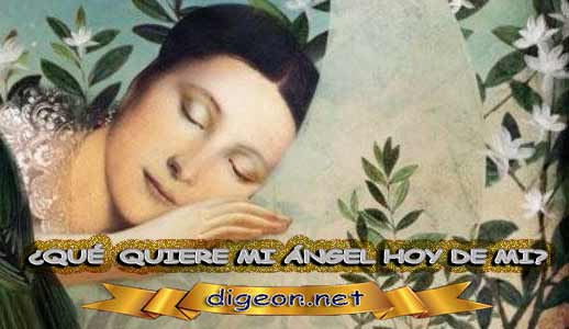 ¿QUÉ QUIERE MI ÁNGEL HOY DE MÍ? 19 de Junio + DECRETO DIVINO + evangelio del día de 19 Junio, MENSAJES DE LOS ÁNGELES, tu ángel, mensajes angelicales, el consejo diario de los ángeles, los Ángeles y sus mensajes, cada día un mensaje para ti, tarot de los ángeles, mensajes gratis de los ángeles, mensaje de tu ángel para 19 Junio, pronóstico de los ángeles hoy, reiki, palabra de dios hoy, evangelio del día, espiritualidad, lecturas del día, lecturas del día de hoy 19 de Junio, evangelio del domingo 19 de Junio, dios, evangelio de hoy 19 de Junio, san juan de dios, jesucristo, jesus, inri, cristo