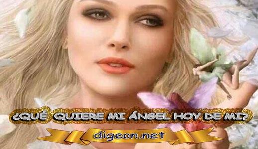 ¿QUÉ QUIERE MI ÁNGEL HOY DE MÍ? 29 de Junio + DECRETO DIVINO + evangelio del día de 29 Junio, MENSAJES DE LOS ÁNGELES, tu ángel, mensajes angelicales, el consejo diario de los ángeles, los Ángeles y sus mensajes, cada día un mensaje para ti, tarot de los ángeles, mensajes gratis de los ángeles, mensaje de tu ángel para 29 Junio, pronóstico de los ángeles hoy, reiki, palabra de dios hoy, evangelio del día, espiritualidad, lecturas del día, lecturas del día de hoy 29 de Junio, evangelio del domingo 29 de Junio, dios, evangelio de hoy 29 de Junio, san juan de dios, jesucristo, jesus, inri, cristo