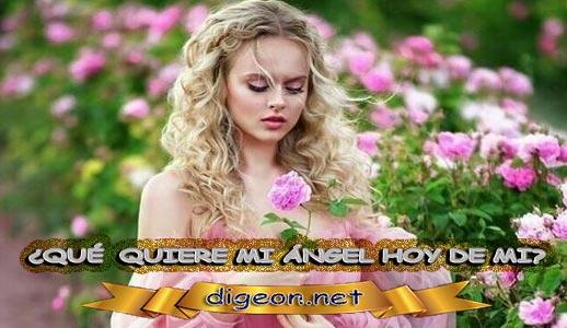 ¿QUÉ QUIERE MI ÁNGEL HOY DE MÍ? 27 de Febrero + DECRETO DIVINO + evangelio del día de hoy, MENSAJES DE LOS ÁNGELES, tu ángel, mensajes angelicales, el consejo diario de los ángeles, los Ángeles y sus mensajes, cada día un mensaje para ti, tarot de los ángeles, mensajes gratis de los ángeles, mensaje de tu ángel para hoy , pronóstico de los ángeles hoy, reiki, palabra de dios hoy, evangelio del día, espiritualidad, lecturas del día, lecturas del día de hoy , evangelio del domingo, dios, evangelio de hoy, san juan de dios, Jesucristo, Jesús, inri, cristo, los arcángeles, mensaje de los ángeles, mensaje angelical, mensajes de angeles diarios, mensajes de los angeles numerología ¿Cómo puedo hablar con mi ángel? ¿Cómo saber que los ángeles te hablan? ¿Cómo se llaman las personas que hablan con los ángeles? ¿Cómo sentir a tu ángel guardián?
