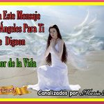 MENSAJES DE LOS ÁNGELES PARA TI - Digeon - ARCÁNGEL GABRIEL FLOR DE LA VIDA 04/08/2021+ MENSAJE DE TÚ ÁNGEL, DECRETO PODEROSO, MENSAJE DE TÚ ÁNGEL,DECRETO PODEROSO mensaje de los ángeles para ti, mensajes de tus ángeles, mensajes de ángeles y arcángeles,mensajes,angeles,espiritual,autoconocimiento,digeon,mensaje de dios y los ángeles, yo soy espiritual, mensaje angélico, mensaje del arcángel miguel, mensaje de los ángeles 2021,canalizacion angélica, mensaje de tu ángel guardián, mensaje angelical diario, mensajes divinos, conexión Angelica