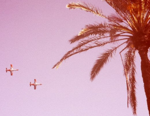 palm Barcelona - digerible