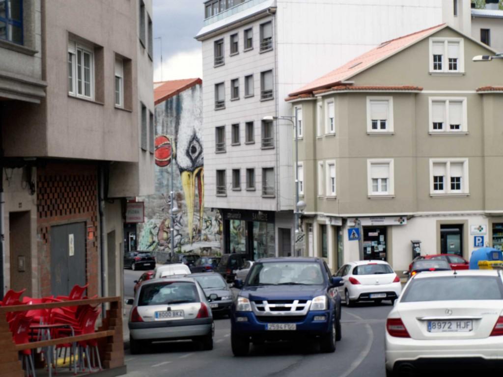 Ericailcane urbano, Galicia , digerible