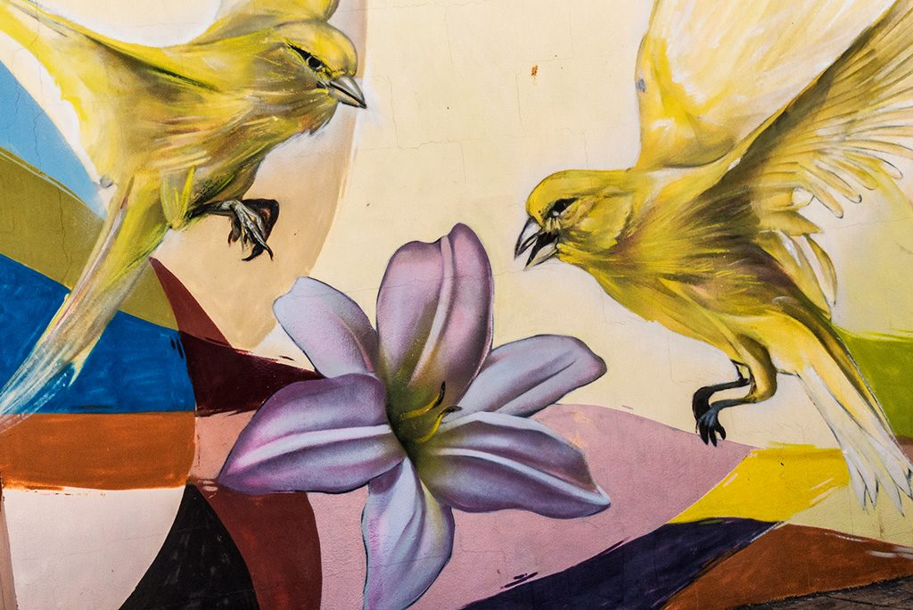 arte urbano Pichi & Avo, Valencia