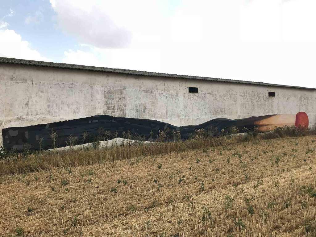 Ampparito arte urbano en Castilla y Léon