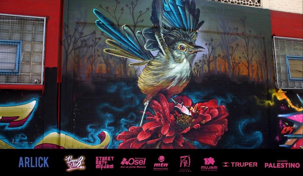 Arte urbano Festival Barrio Vivo, Mexico
