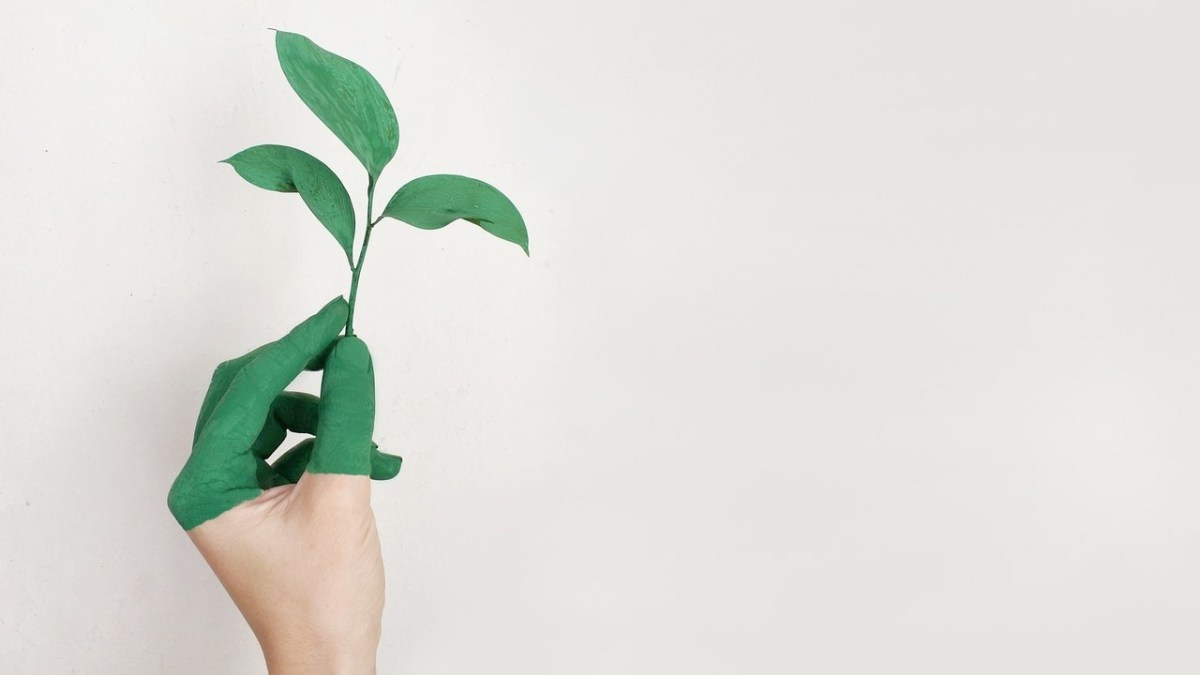 6 Effective Ways To Expedite Your Personal Growth As A Freelancer