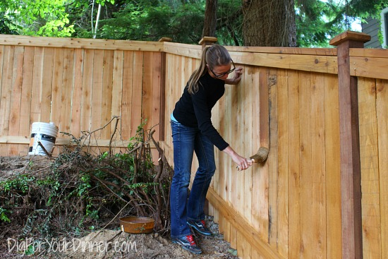 staining fence natural fence stain