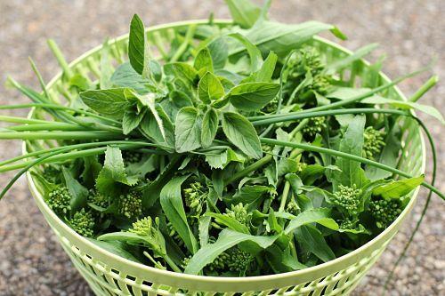 broccoli rabb
