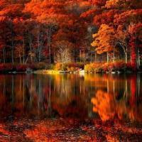 Harriman State Park - New York