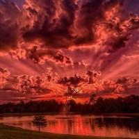 Florida Sunset by Lufti Shedraway