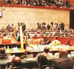 Parliament: File picture