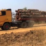 Timber association demands answers from Kapata