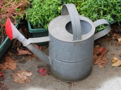 metalic watering can