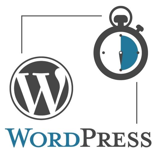 Visioconférence WordPress 30 minutes