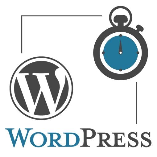 Visioconférence WordPress 60 minutes