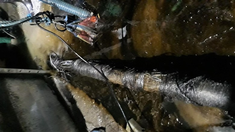 Pre-inspection underway for repair of damaged Negros submarine cable