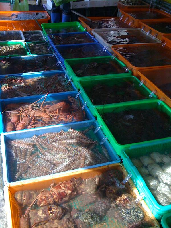 海産物市場