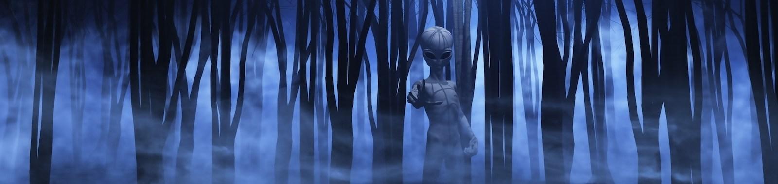 3D render of an alien in a spooky foggy forest