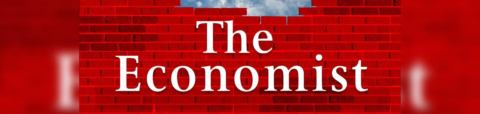 The-Economist-bricks-eye