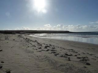 White sand, sea, and sun on the beach of Skara Brae.