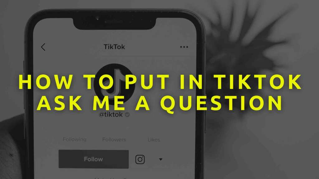 How-to-put-in-TikTok-ask-me-a-question