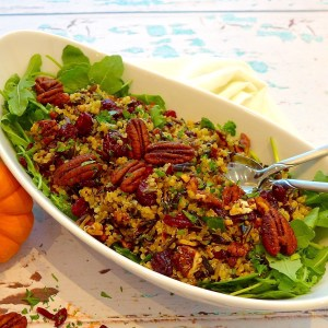 Cranberry Wild Rice Salad Recipe and ideas at diginwithdana,com