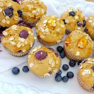 Fruity Oatmeal muffins at diginwithdana.com