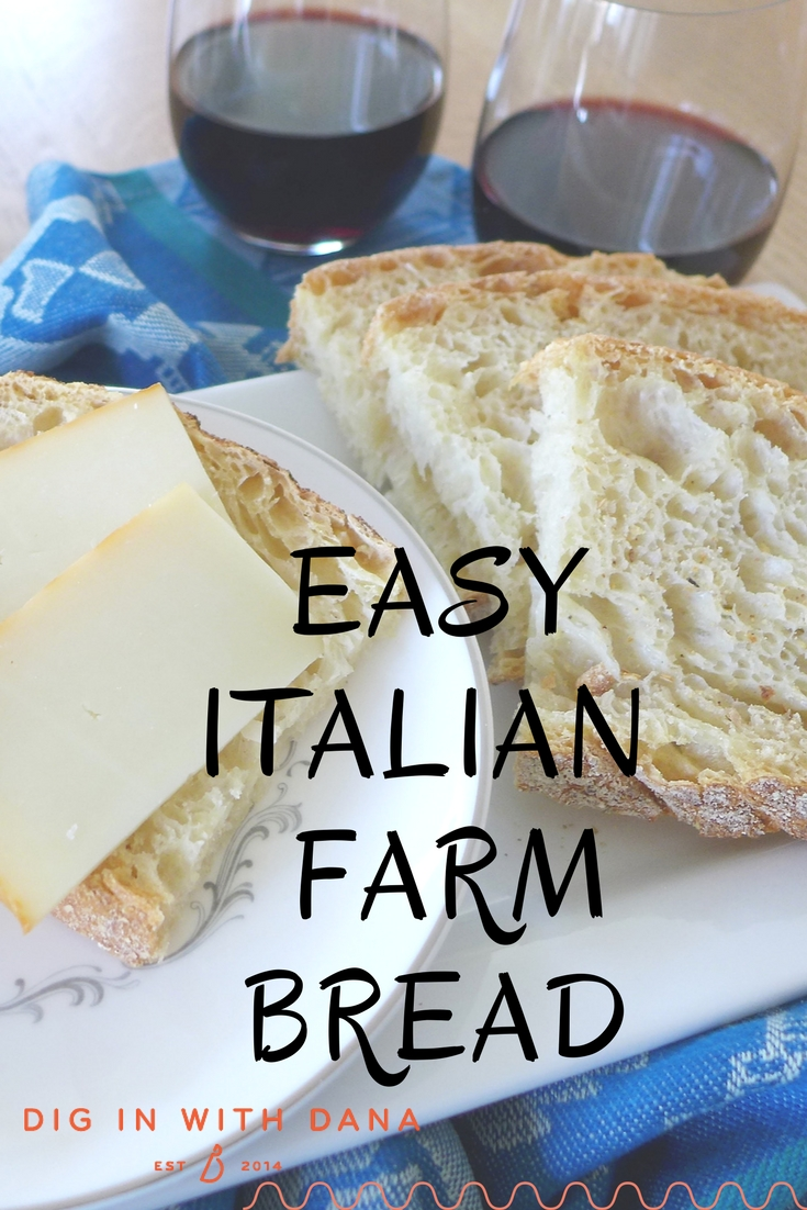 Easy Italian Farm Bread is a no knead, no mixer recipe, perfect for beginners! Step by step recipe and helpful photos at diginwithdana.com