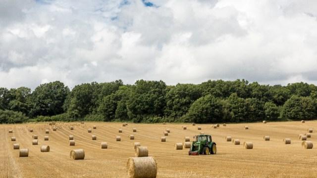 rural digital