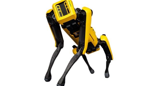 Boston Dynamics Robotic Dog