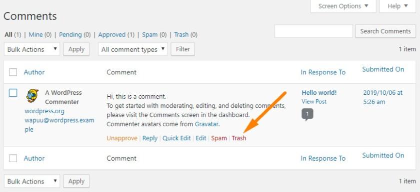 Screenshot of the default comment in WordPress