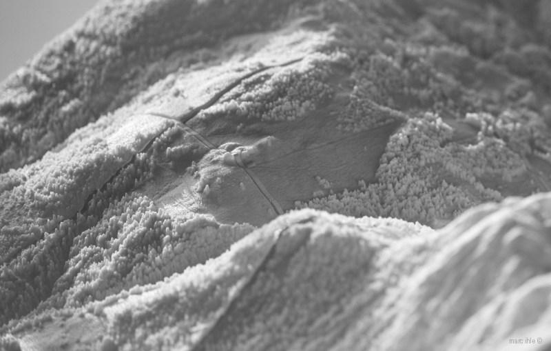 dlm-alpbach-picture-model-3d-print-research-project-marc-ihle-03-1240-px-u