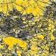 digital interpretation of high alpine terrain through the use of GIS data-sets