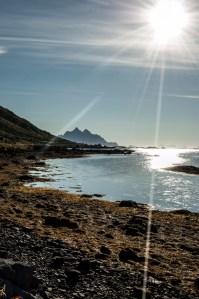 Algea | Lofoten, Norway 2016 | Foto: Marc Ihle