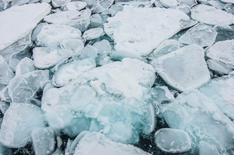 2017-Barents-Sea-DSC_3084-foto-marc-ihle-2000px