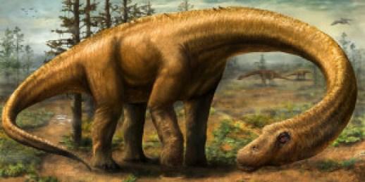 teknologi-3d-dipakai-ungkap-misteri-dinosaurus-terbesar-di-bumi