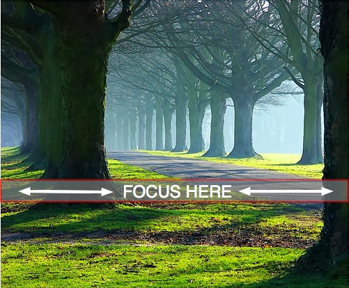 focus landscape lighting parts. landscape-1 focus landscape lighting parts