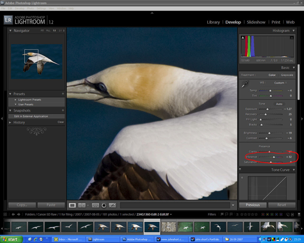 Processing RAW Files In Adobe Lightroom - 38 photographs so perfect no amount of photoshop can improve them