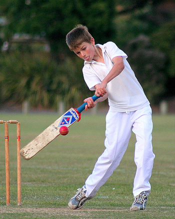 Photographing Cricket – DPS Community Workshop