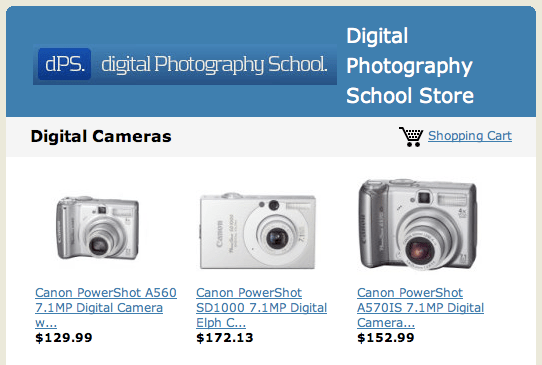 Digital Photography School Store