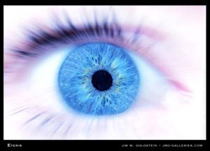 Eyeris by Jim Goldstein