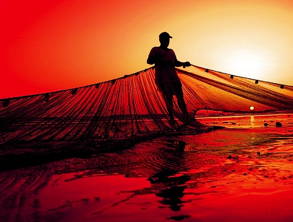 12 Stunning Silhouette Shots