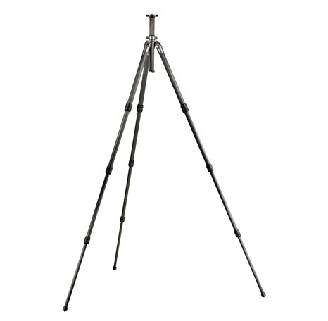 STEADY ON! [An Introduction to Tripods]
