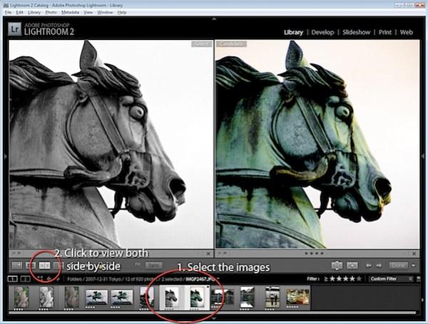 Virtual Copies in Lightroom-4.jpg