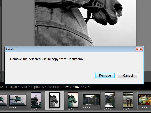 Virtual Copies in Lightroom_delete1.jpg