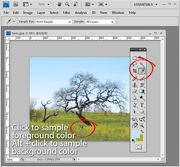 10-photoshop-features-3.jpg