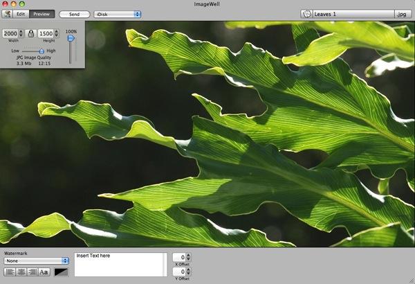 ImageWell 1.jpg